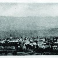 bm 3.jpg